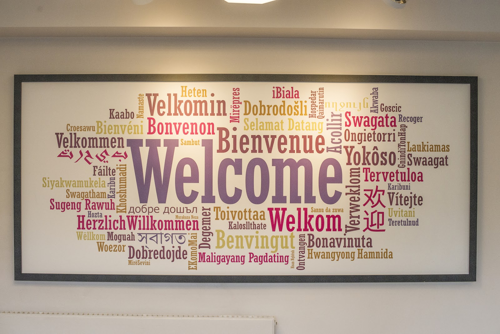 language board at safestay hostel